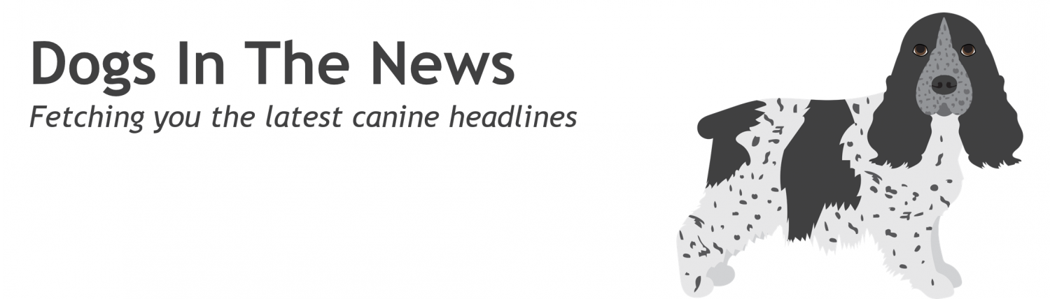 Dogs in The News